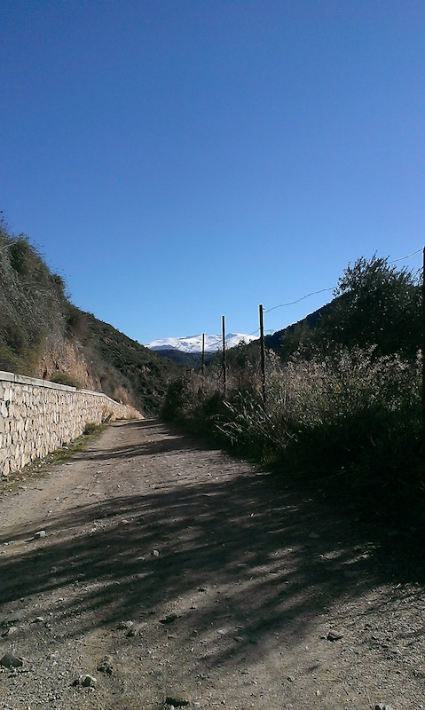 Camino de Beas