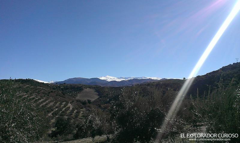 Sierra Nevada al fondo