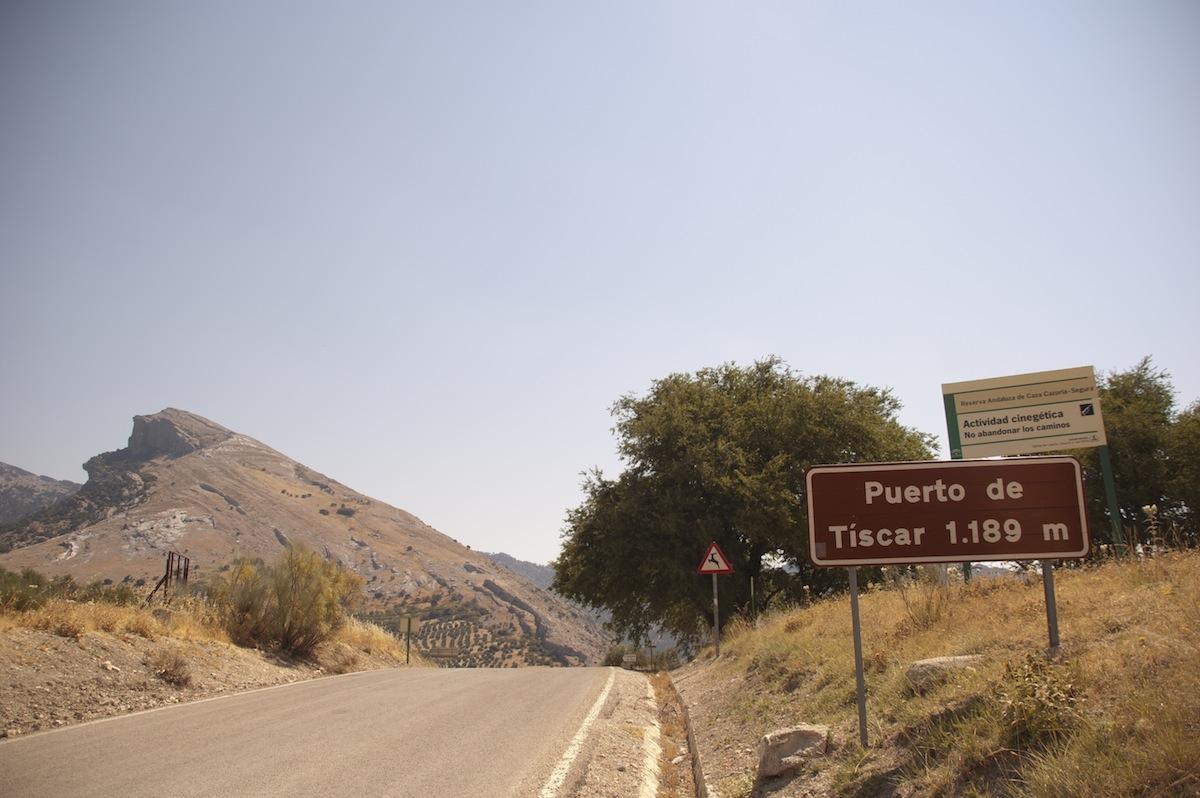 1189 msnm